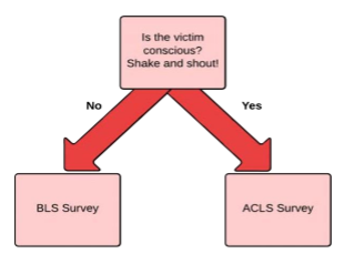 Free 2019 Acls Study Guide Acls Made Easy