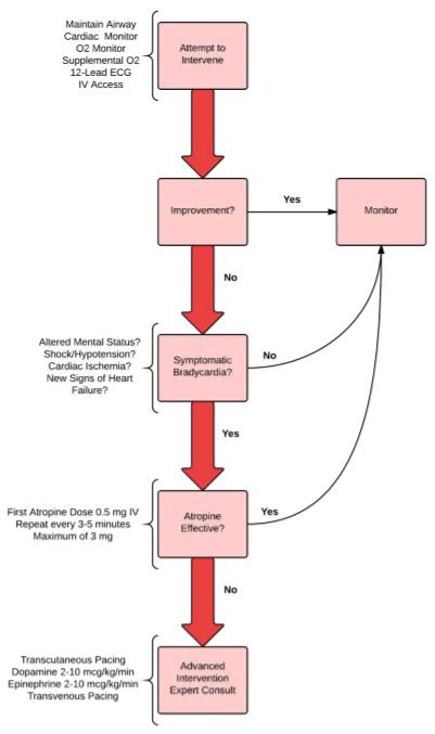 bradycardia-algorithm